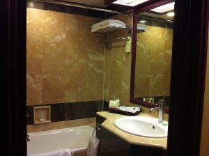 Hotel Borobudur shower room