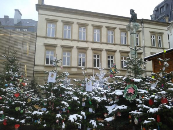 Luxembourg Christmas trees covered in snow